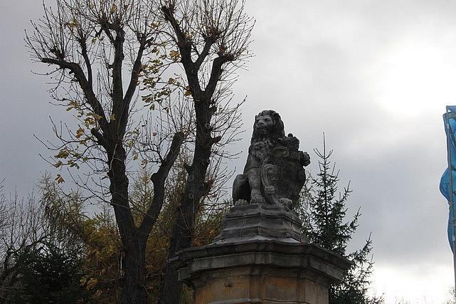 Lwy znowu zachwycą
